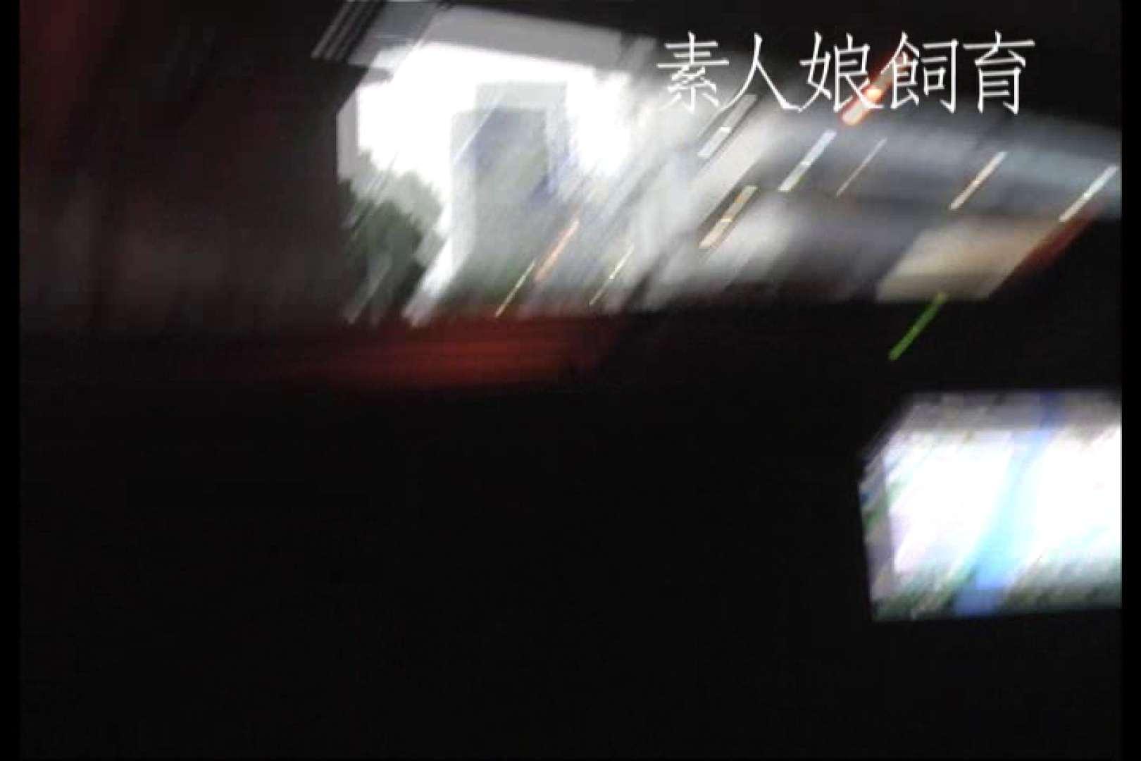 素人嬢飼育~お前の餌は他人棒~6月17日野外露出 すけべな素人 セックス無修正動画無料 90画像 89