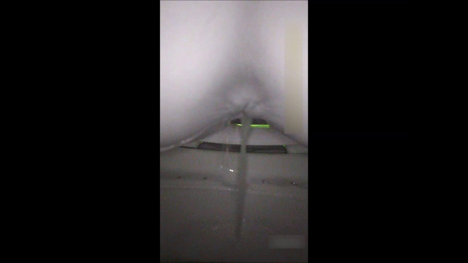 キレカワ女子大生の秘密の洗面所!Vol.052 盗撮 おまんこ動画流出 85画像 27