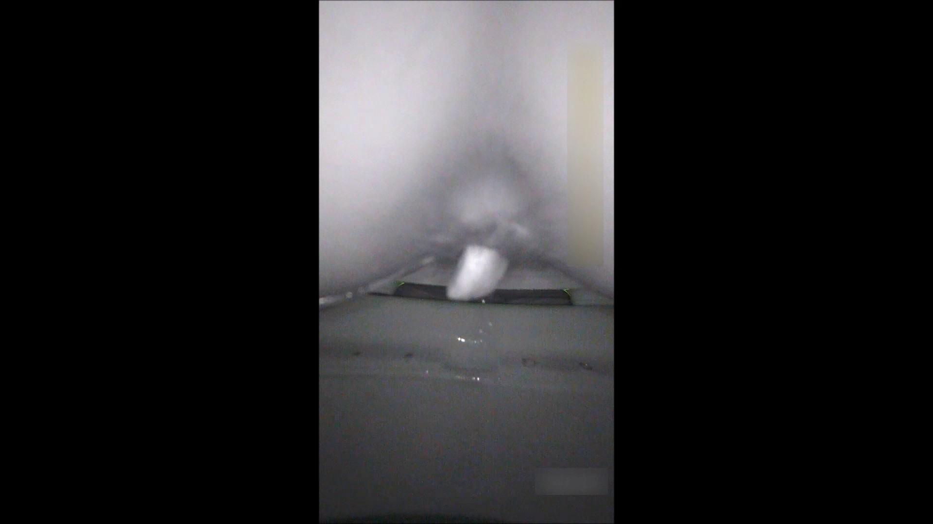 キレカワ女子大生の秘密の洗面所!Vol.052 バックショット セックス無修正動画無料 85画像 30