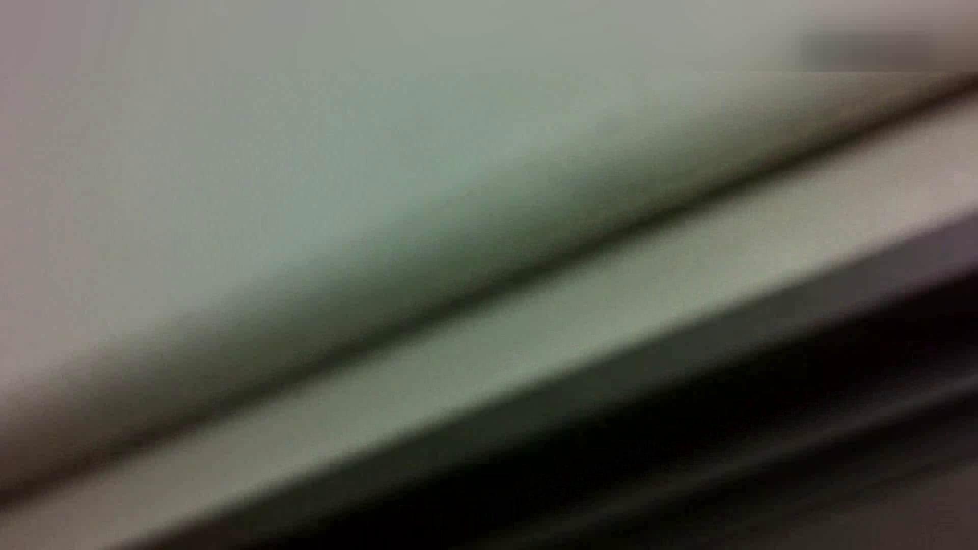 お姉さんの恥便所盗撮! Vol.9 すけべなOL オメコ動画キャプチャ 99画像 62